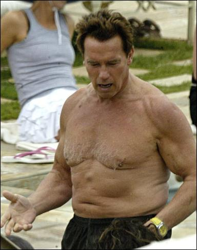 arnold schwarzenegger now and before. Schwarzenegger has enacted