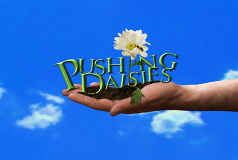 Pushingdaisies_2